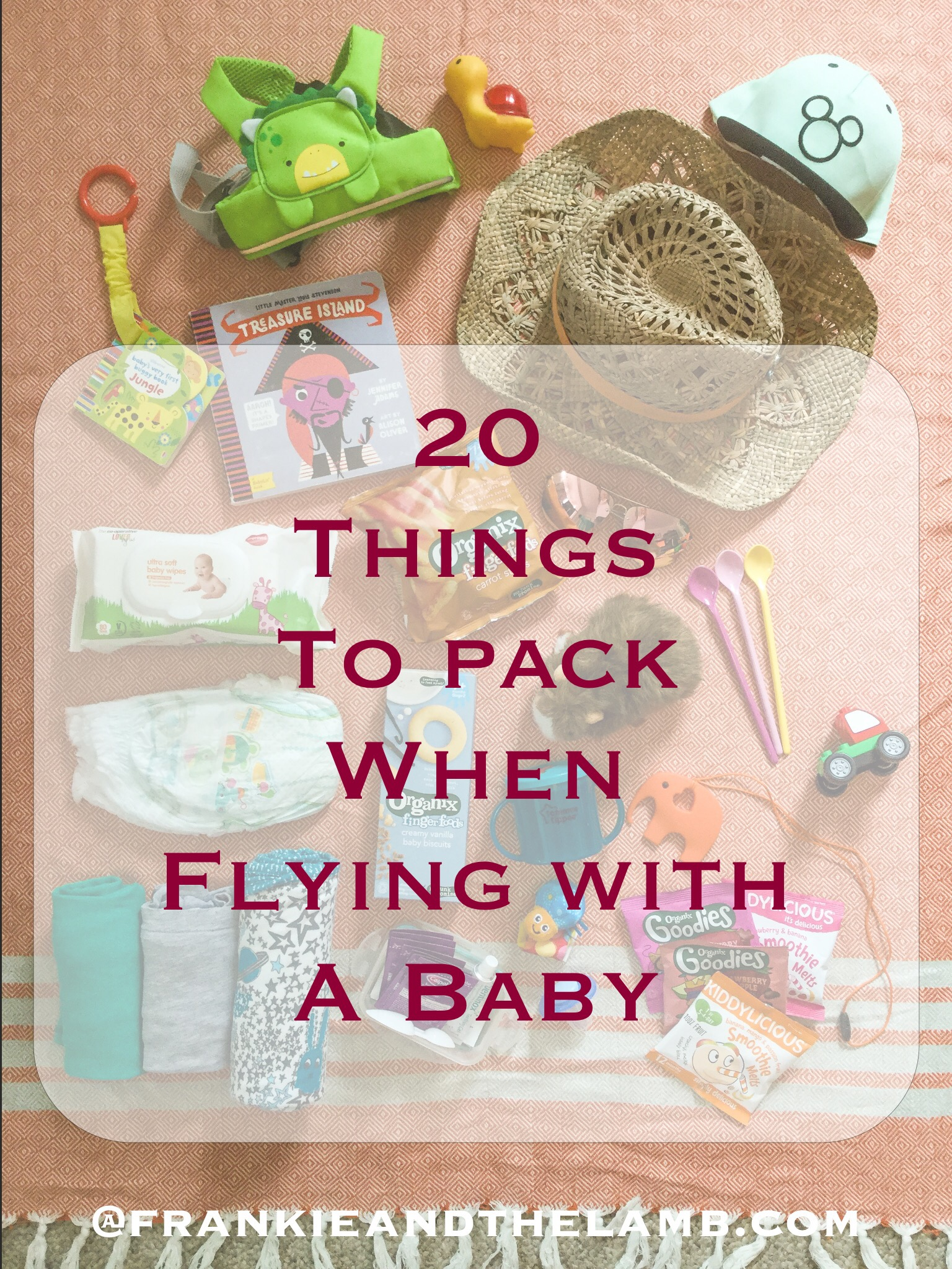 20 Things I Pack When Flying with a Baby Frankie and the Lamb